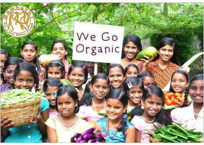 we go organic